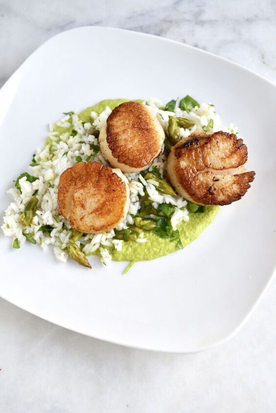 pan seared scallops with rice and asparagus puree