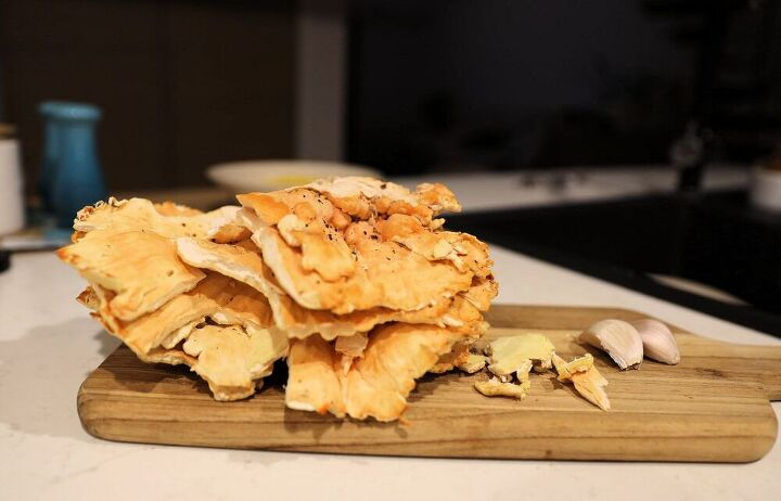 Chicken of Woods Mushroom