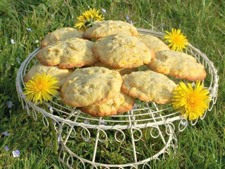 how to make delightful dandelion lemon biscuits