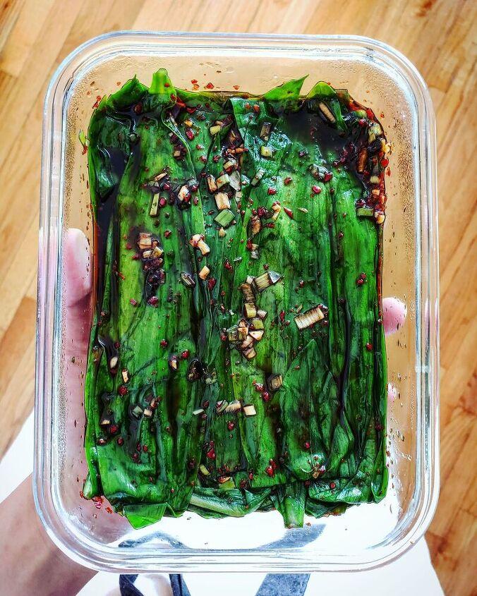 ramp leaf jangajji soy marinated ramp leaves