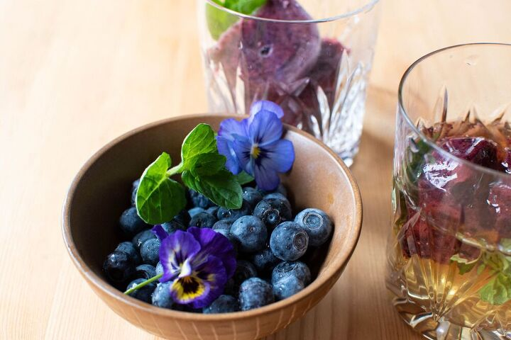 fresh blueberry ice cubes for mint juleps