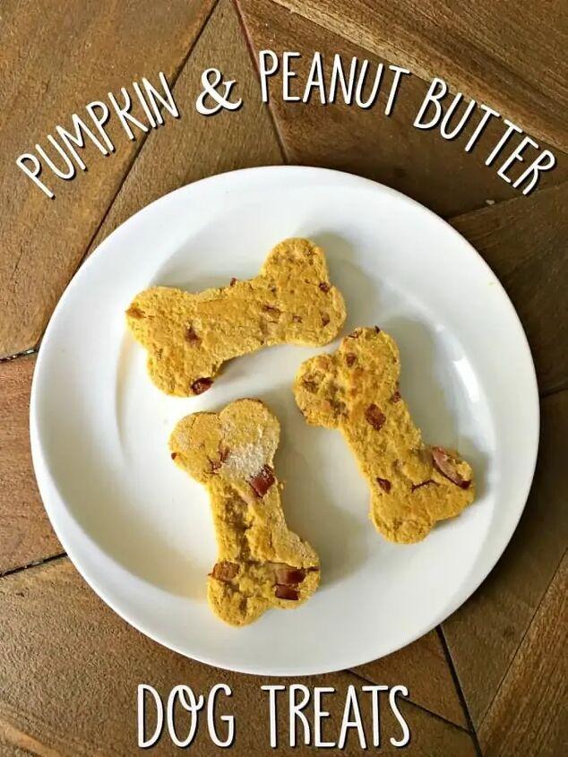 pumpkin and peanut butter dog treats