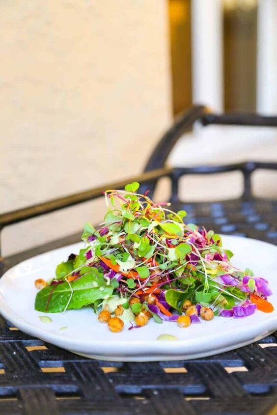 microgreen salad chickpea croutons green goddess dressing