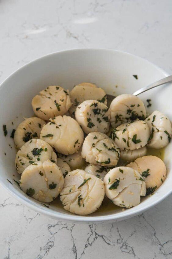 venetian style scallops